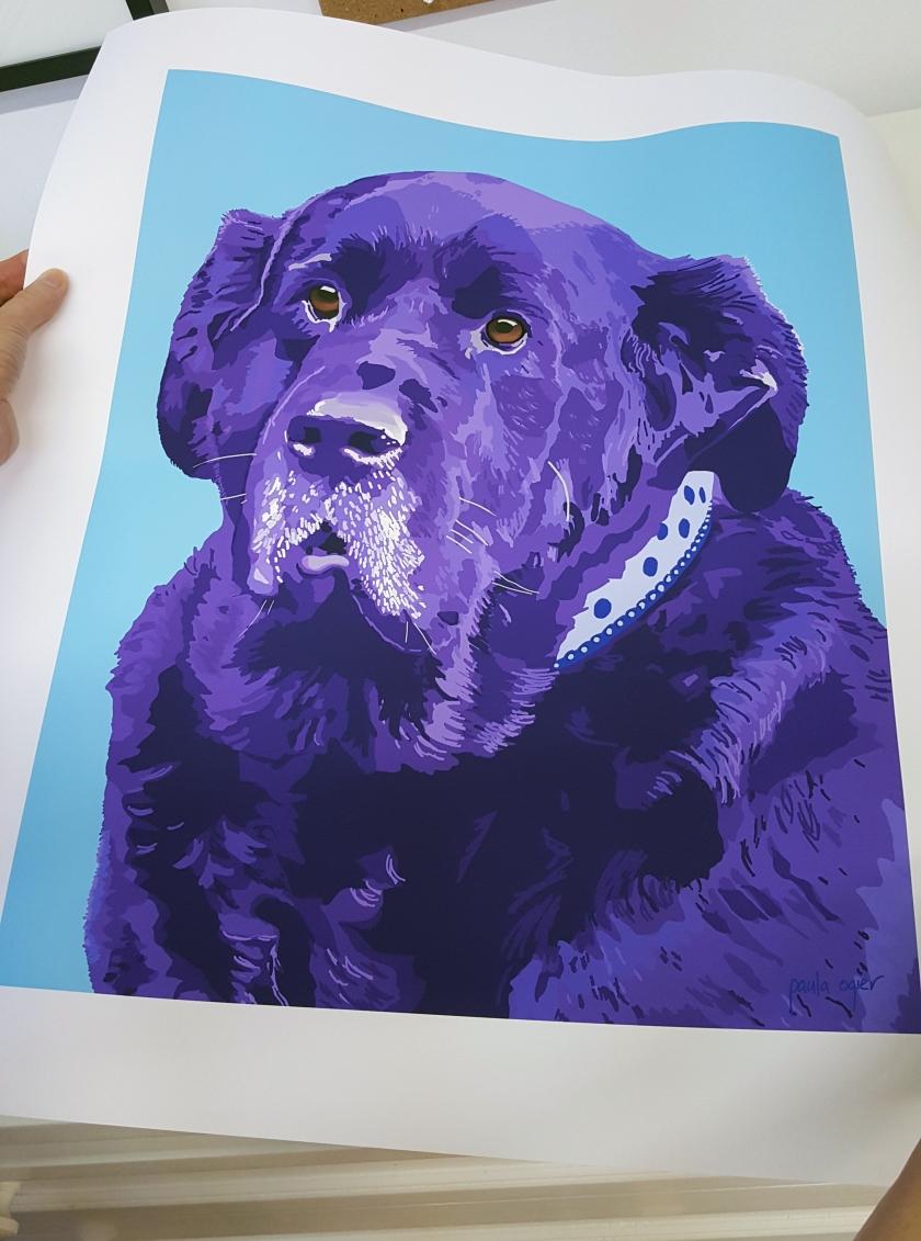 Paula Ogier pet portrait